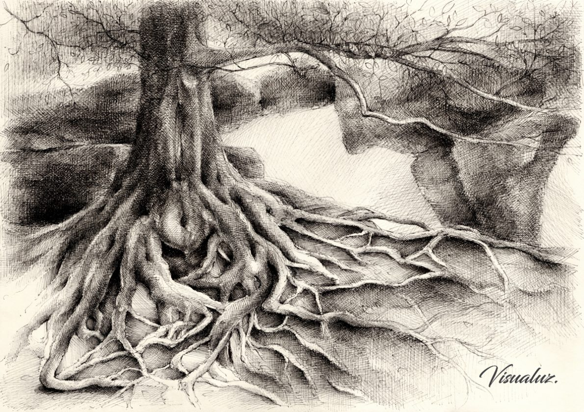 Root and sandstone, drawing, 42 x 29,7 cm