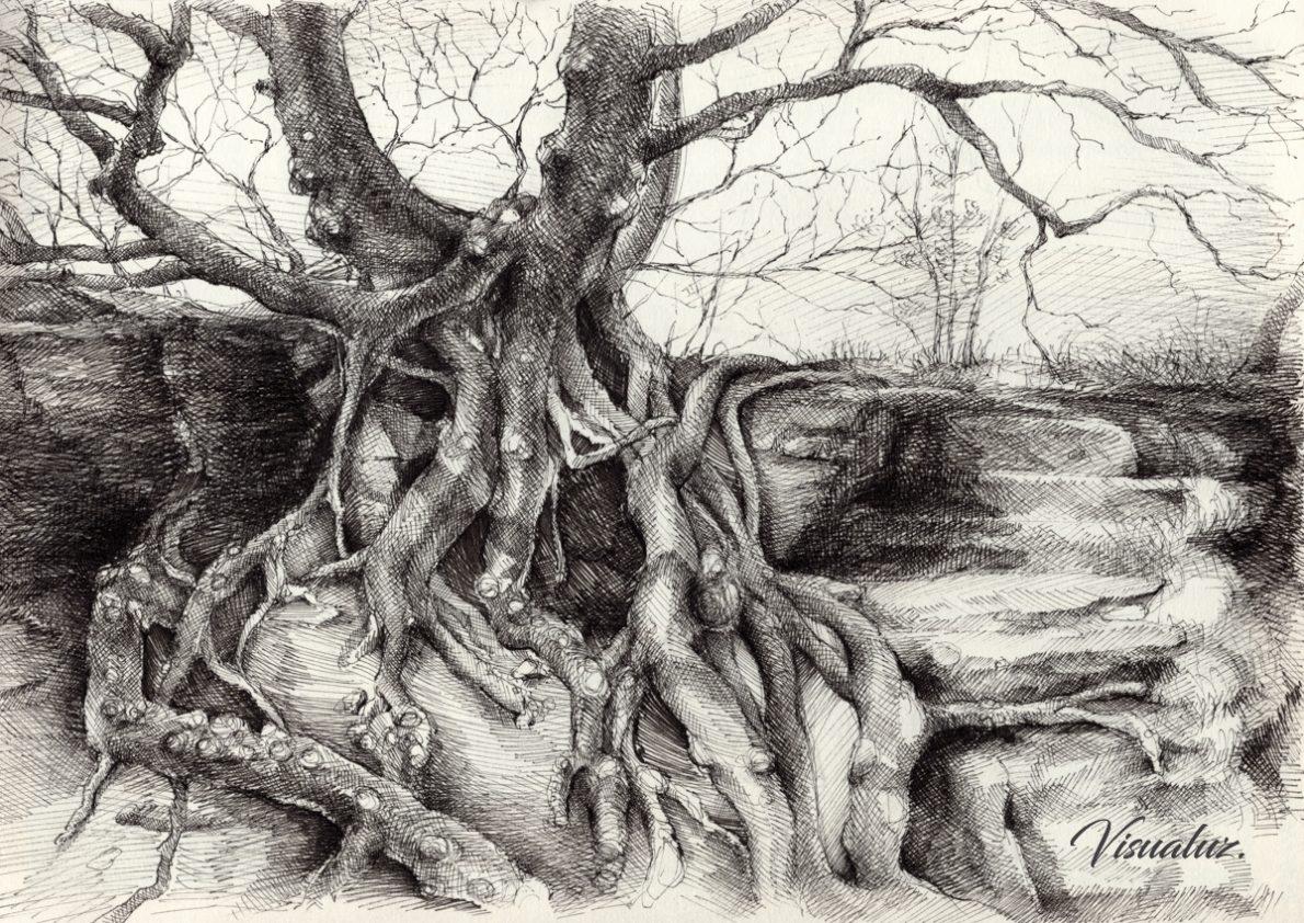 Graceful tree that grows on the sandstone, drawing, 29,5 x 20,8 cm