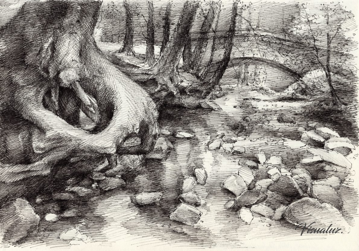 Roots and silent forest IV., drawing, 29,5 x 20,8 cm
