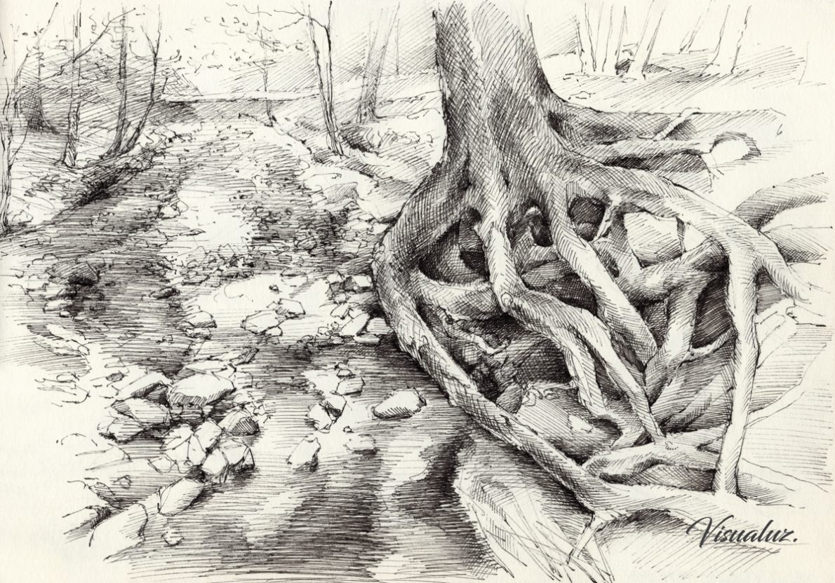 Roots and silent forest I., drawing, 29,5 x 20,8 cm